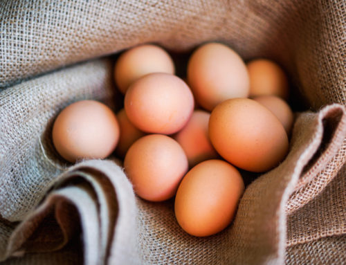 Are Eggs Nature's Perfect Food?